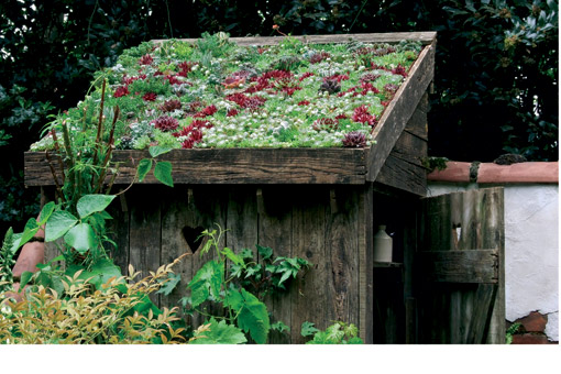 Small space gardening demands creativity my urban farm project - Small space farming image ...